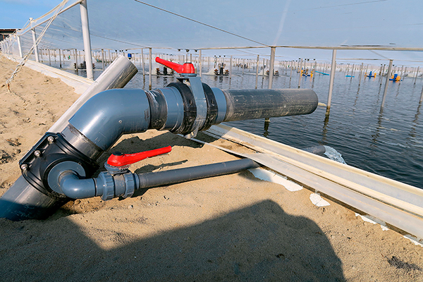 Instalación piscifactoría en Perú